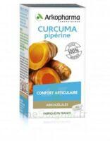 Arkogelules Curcuma Pipérine Gélules Fl/45 à LA SEYNE SUR MER