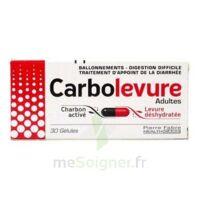 CARBOLEVURE Gélules adulte Plq/30 à LA SEYNE SUR MER
