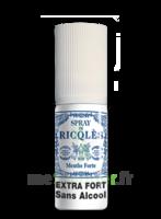 Ricqles Spray buccal sans alcool menthe 15ml à LA SEYNE SUR MER