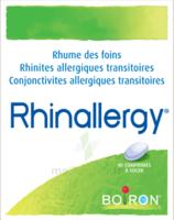 Boiron Rhinallergy Comprimés B/40 à LA SEYNE SUR MER